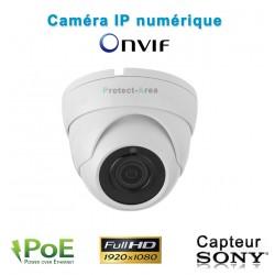 Caméra dôme IP POE 1080P FULL HD Infrarouge 20m ONVIF capteur SONY