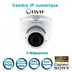 Caméra dôme IP POE 5 MegaPixels Infrarouge 35m ONVIF capteur SONY